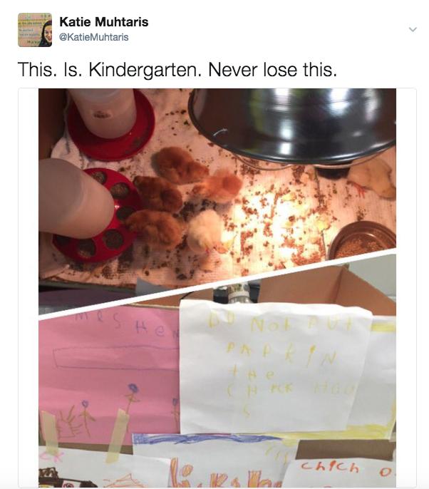 Launching Book Creator with Kindergarten: A Blog Series